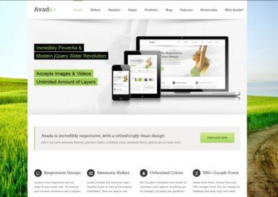 Avada-WordPress-Theme-2