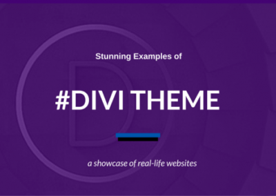 Divi-WordPress-Theme-1